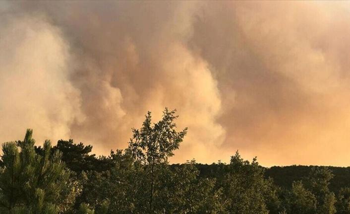 ABD'de yıldırım düşmesi sonucu orman yangını çıktı