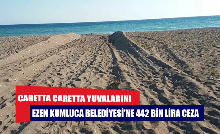 Caretta caretta yuvalarını ezen Kumluca Belediyesi'ne 442 bin lira ceza