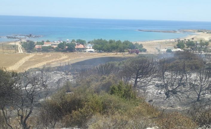 Dipkarpaz'da yangın.. 30 Dönümlük  Makilik Alan Yandı