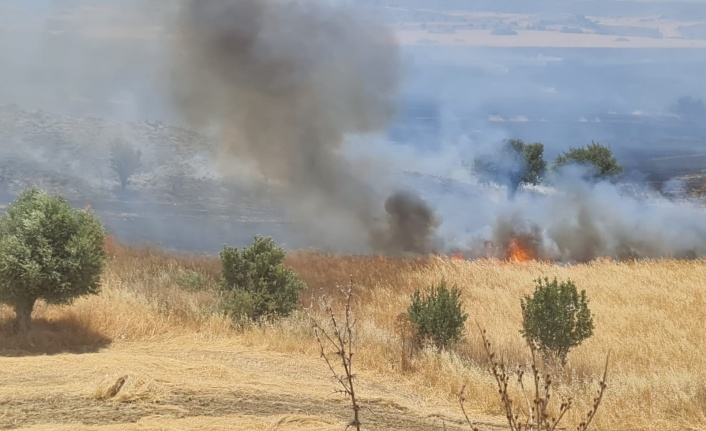 Taşkent- Dikmen arası büyük yangın