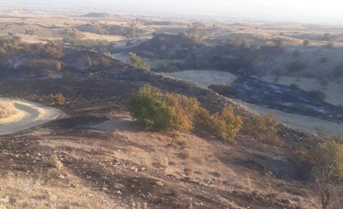 Kalavaç'ta çıkan yangında yabani zeytin, harup ve makilik alan yandı