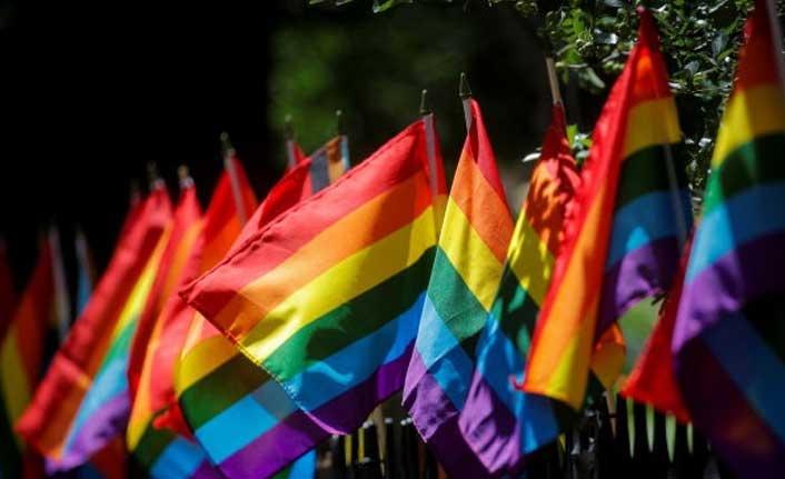 Macaristan, 'eşcinsellik yasasını' referanduma götürüyor