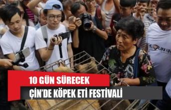 Çin, köpek eti festivalinden vazgeçmiyor