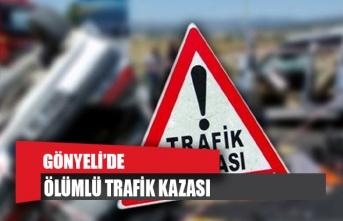 Gönyeli'de ölümlü kaza!