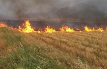 Yeşilköy'ün doğu kısmında yangın çıktı.