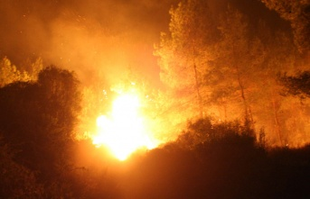 Akdoğan ve Gazimağusa'da yangın...