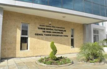 Girne'de Balıkçıları Bilgilendirme Toplantısı Düzenleniyor