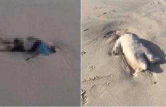 Libya'da çocuk cesetleri kıyıya vurdu