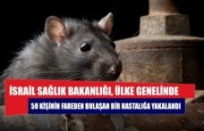 İsrail'de 50 kişi fareden bulaşan hastalığa yakalandı