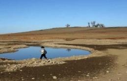 Kayıp uçak sular çekilince ortaya çıktı