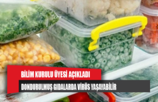 Yamanel: Dondurulmuş gıdalarda virüs yaşayabilir
