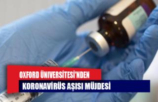 Oxford Üniversitesi'nden koronavirüs aşısı...