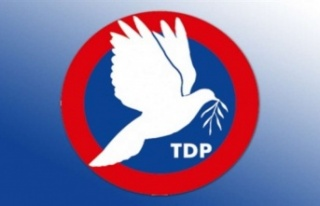 TDP, Bilişim Yasası'na itirazını Anayasa...