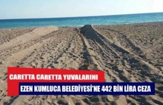 Caretta caretta yuvalarını ezen Kumluca Belediyesi'ne...