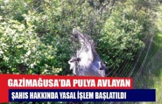 GAZİMAĞUSA'DA PULYA AVLAYAN ŞAHIS HAKKINDA YASAL...