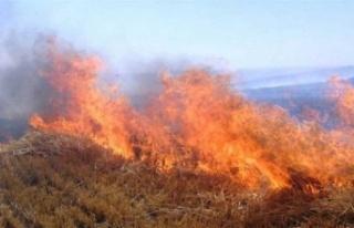 Lefkoşa'nın Kuzeyinde Yangın