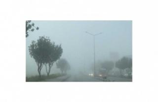 Dikkat yoğun sis var!