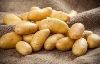 Rum patates üreticileri eylem yaptı