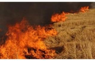 3 farklı yerde yangın