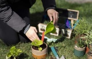 Büyü Bitki ve BEE ortaklığı ile Su Döngüsü...
