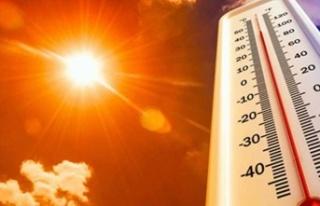 Hava Sıcaklığı 43 Dereceye Kadar Yükselecek