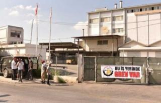 Binboğa-Yem Ltd'de Grev Dördüncü Gününde