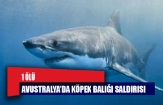 Avustralya'da köpek balığı saldırısı: 1 ölü