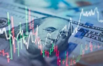 Ekonomist Önder Tavukçuoğlu: Piyasalarla aynı yöne gitmeyerek dalgalanmalardan korunabilirsin