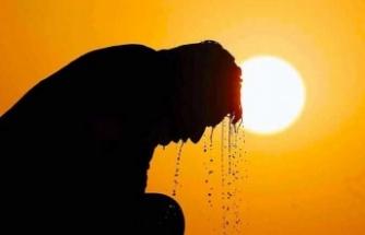 Japonya'da yüksek hava sıcaklığı nedeniyle 23 kişi hayatını kaybetti