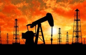 Dünya Bankasından çarpıcı 2022 petrol ve altın fiyatları tahmini