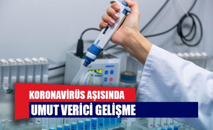 Koronavirüs aşısında umut verici gelişme