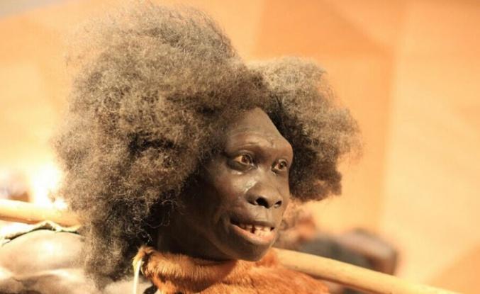 Yeni DNA çalışması, gizemli bir atanın modern insana aktardığı mirası ortaya koydu