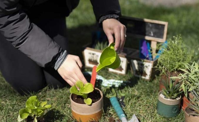 Büyü Bitki ve BEE ortaklığı ile Su Döngüsü Atölyesi