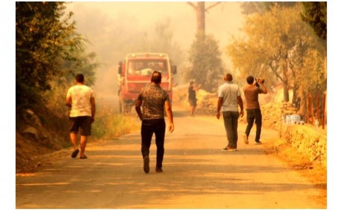 Yangınların sebebiyle ilgili çok yönlü soruşturma yapılıyor!